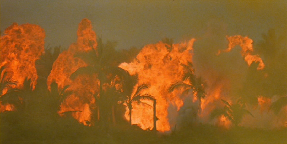 apocalypse now critical essay Immediately download the apocalypse now summary, chapter-by-chapter analysis, book notes, essays, quotes, character descriptions, lesson plans, and more - everything you need for studying or teaching apocalypse now.