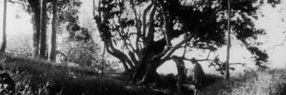 bannertree
